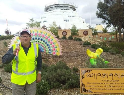 Volunteering at the Great Stupa